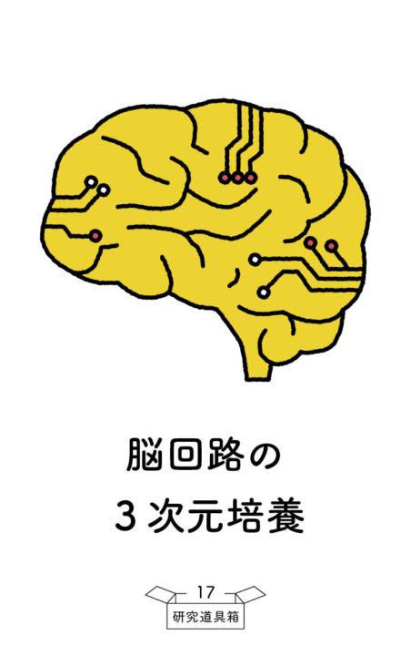 道具箱_20191015_表_86_54_center17